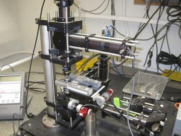 Optical trap set-up on a diode laser